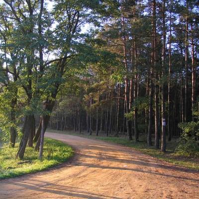 Kampinoski_Park